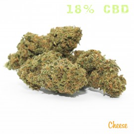 FLORES CBD CHEESE