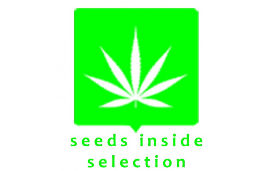 SEEDS INSIDE SELECTION